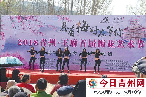 青州市首届梅花艺术节举行
